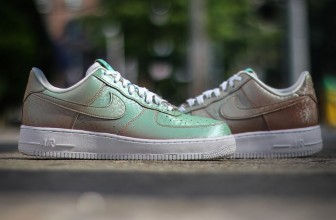 Nike Air Force 1 Low « Preserved Icons »